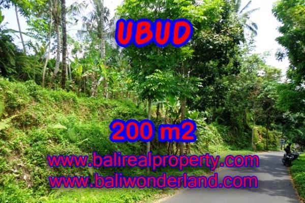 Tanah dijual di Ubud 200 m2 View sawah dan hutan di Ubud Tegalalang