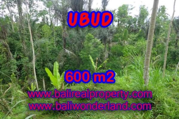 Tanah dijual di Ubud Bali 6 Are di Ubud Tegalalang