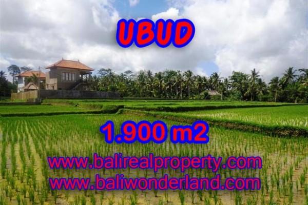 Jual tanah di Ubud Bali 1.900 m2 view sawah dekat sungai di Dekat sentral Ubud