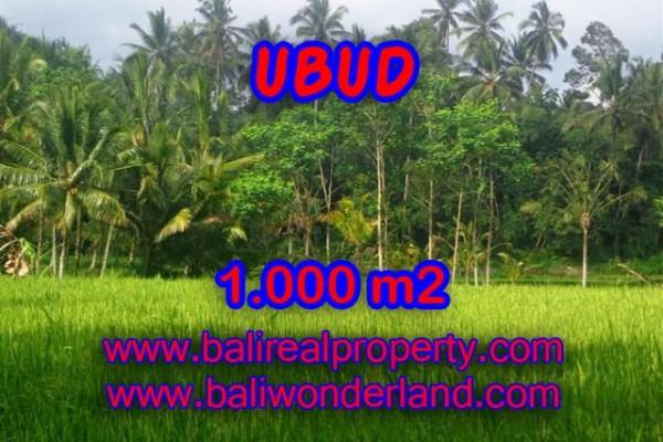 Tanah dijual di Ubud Bali 1.000 m2 view sawah di Ubud Payangan