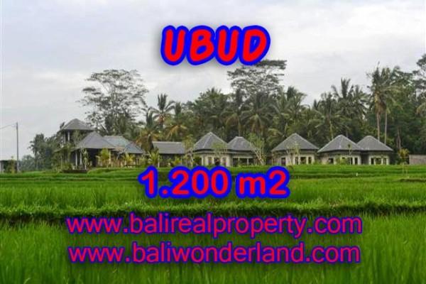 DIJUAL TANAH DI BALI, MURAH DI UBUD RP 3.850.000 / M2 – TJUB365