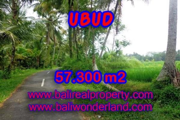 Jual Tanah murah di UBUD TJUB377 – investasi property di Bali