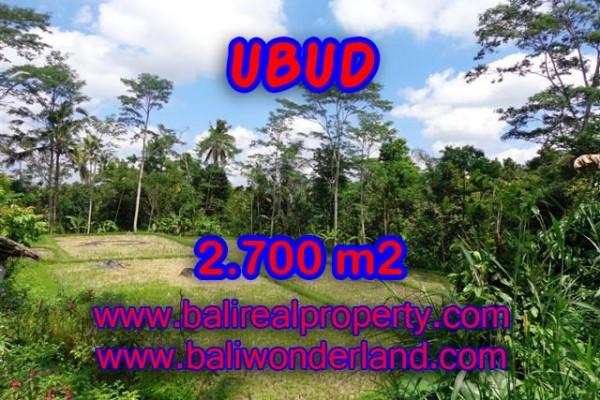 Tanah di Ubud Bali dijual view sawah dan hutan murah di Ubud Tampak Siring