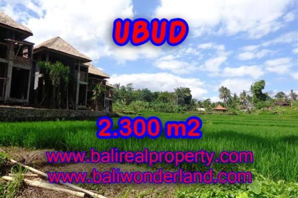 Tanah dijual di Ubud murah di Dekat Ubud Center Bali