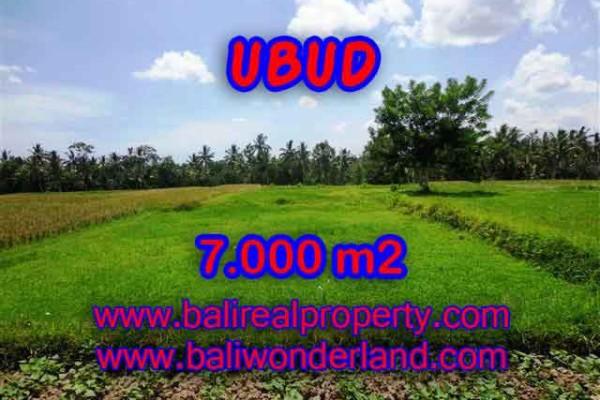 INVESTASI PROPERTI DI BALI – DIJUAL TANAH DI UBUD BALI CUMA RP 2.750.000 / M2