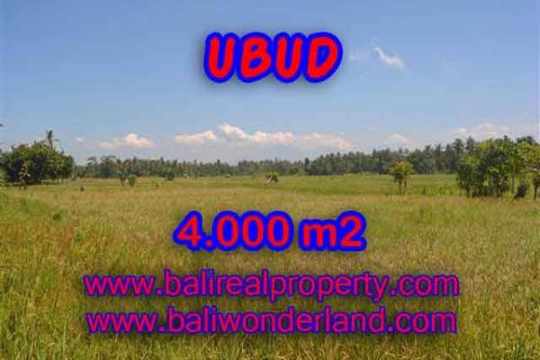 Murah ! Tanah di UBUD Bali Dijual TJUB387 – investasi property di Bali