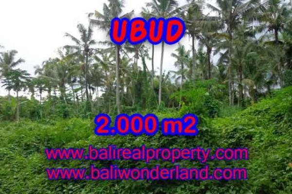 Investasi Properti di Bali – Murah ! Tanah di UBUD Bali Dijual TJUB397