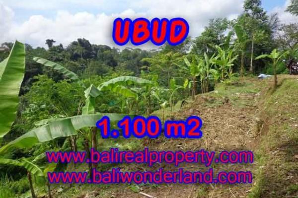 Murah ! Tanah di UBUD Bali Dijual Rp 950.000 / m2 – TJUB407