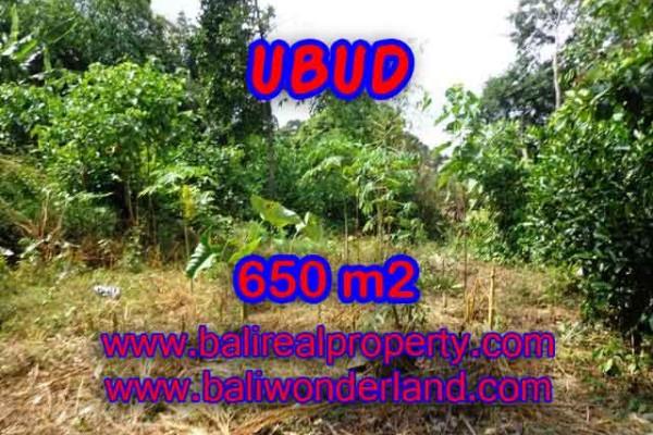 Peluang Investasi Properti di Bali – Jual Tanah murah di UBUD TJUB417