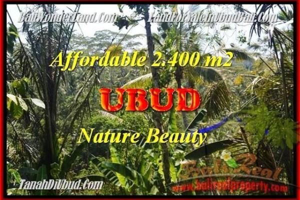 TANAH MURAH di UBUD Untuk INVESTASI TJUB454
