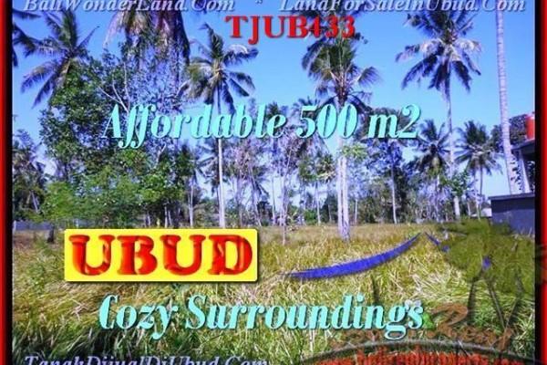 TANAH DIJUAL di UBUD BALI TJUB433