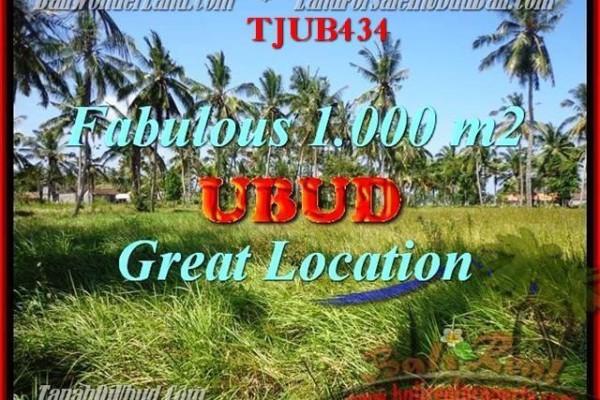 TANAH MURAH di UBUD 10 Are View kebun