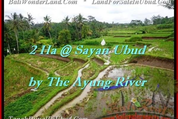 JUAL MURAH TANAH di UBUD BALI 200 Are View tebing,sawah,sungai ayung