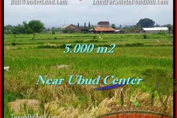 DIJUAL TANAH MURAH di UBUD BALI 50 Are di Dekat sentral Ubud