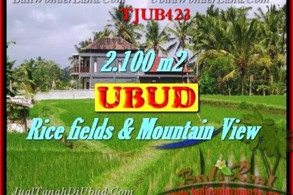 INVESTASI PROPERTY, TANAH MURAH di UBUD TJUB423
