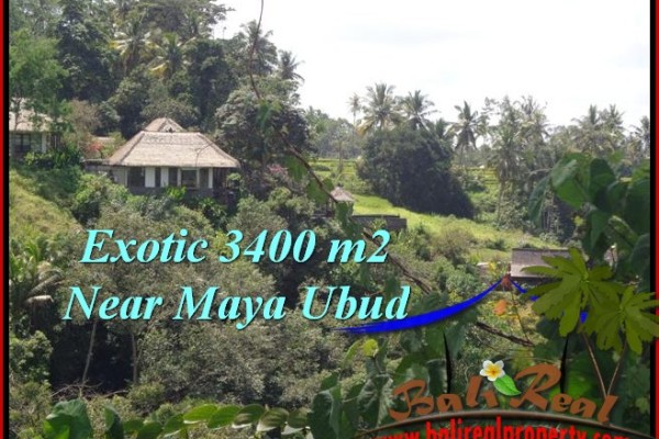 TANAH DIJUAL MURAH di UBUD BALI 3,400 m2 di Ubud Tengkulak