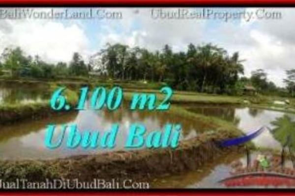 TANAH MURAH JUAL UBUD 6,100 m2  View Sawah,  link. villa