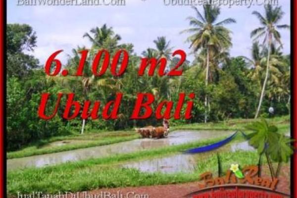 JUAL TANAH MURAH di UBUD BALI Untuk INVESTASI TJUB552