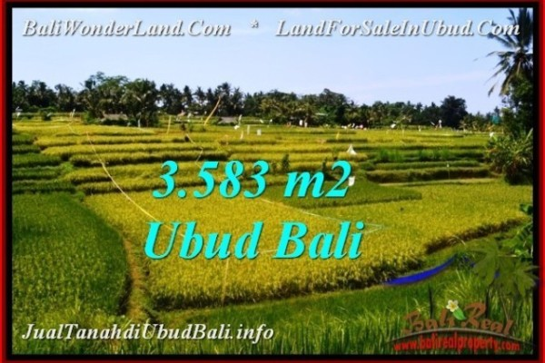 TANAH MURAH DIJUAL di UBUD BALI Untuk INVESTASI TJUB542