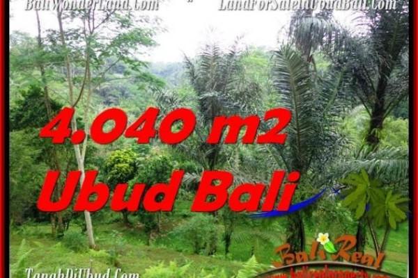 TANAH MURAH di UBUD BALI DIJUAL 40.4 Are di Ubud Tegalalang