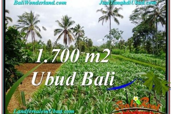 JUAL TANAH MURAH di UBUD 17 Are di Ubud Payangan