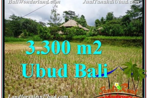 TANAH JUAL MURAH  UBUD BALI 3,300 m2  View kebun dan sawah