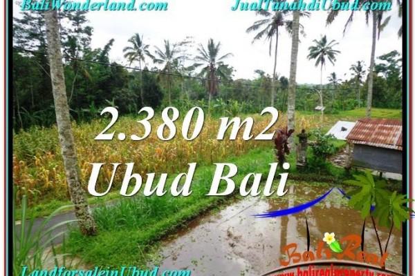 TANAH di UBUD JUAL MURAH 23.8 Are View kebun dan sawah