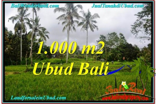 DIJUAL TANAH MURAH di UBUD 1,000 m2 di Ubud Payangan