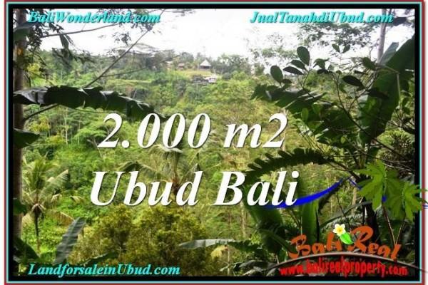 DIJUAL TANAH di UBUD Untuk INVESTASI TJUB573
