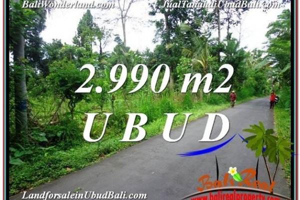 TANAH di UBUD JUAL MURAH 2,990 m2  View kebun dan Tebing