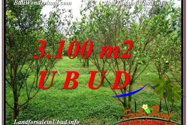 DIJUAL MURAH TANAH di UBUD BALI 31 Are di Ubud Tegalalang