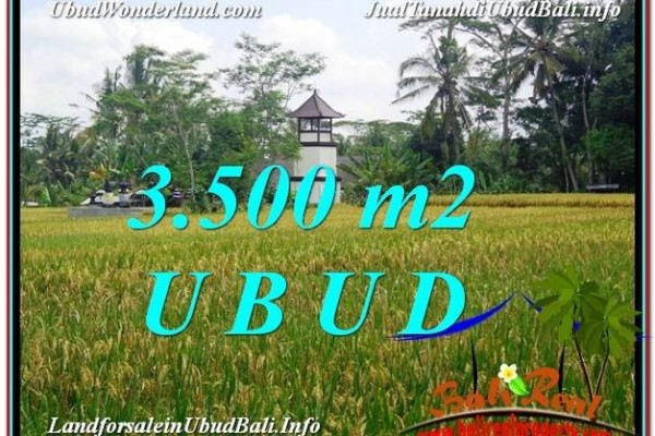 JUAL MURAH TANAH di UBUD TJUB596
