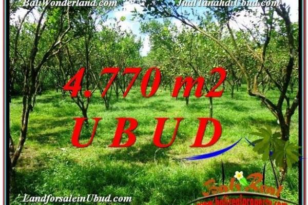 TANAH DIJUAL MURAH di UBUD BALI 4,770 m2 di Ubud Tegalalang