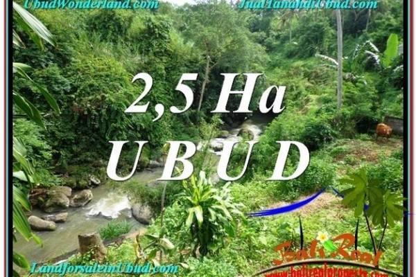 TANAH di UBUD DIJUAL MURAH 260 Are di Sentral Ubud