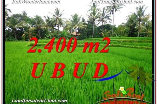JUAL TANAH MURAH di UBUD Untuk INVESTASI TJUB587