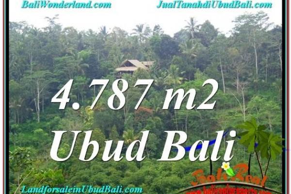 TANAH MURAH JUAL di UBUD BALI 48 Are View Kebun, Sungai dan Tebing
