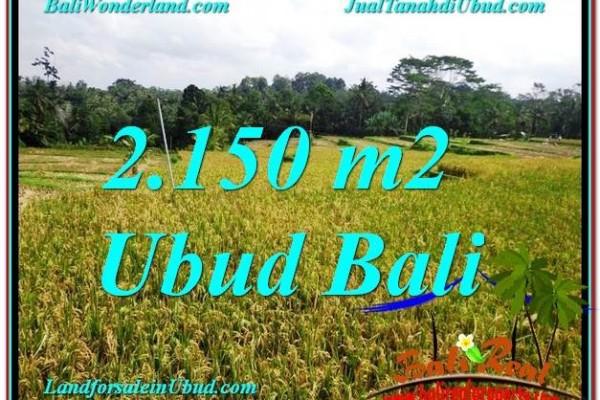 JUAL MURAH TANAH di UBUD BALI 22 Are View Sawah dan Gunung lingkungan Villa