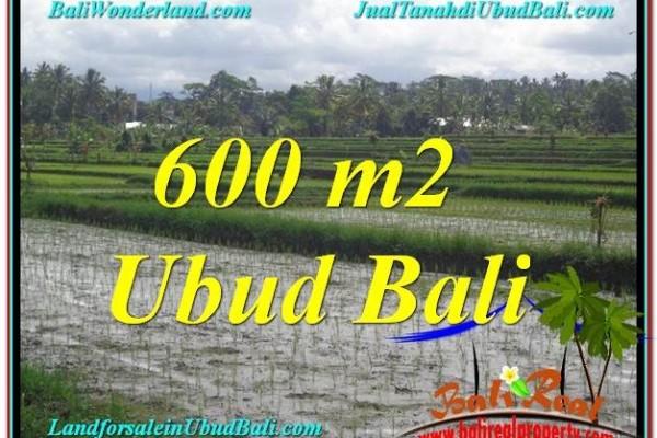 TANAH DIJUAL MURAH di UBUD 600 m2 di Ubud Tegalalang