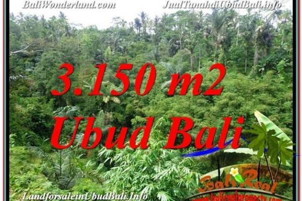 TANAH JUAL MURAH  UBUD BALI 32 Are View Tebing dan Sungai