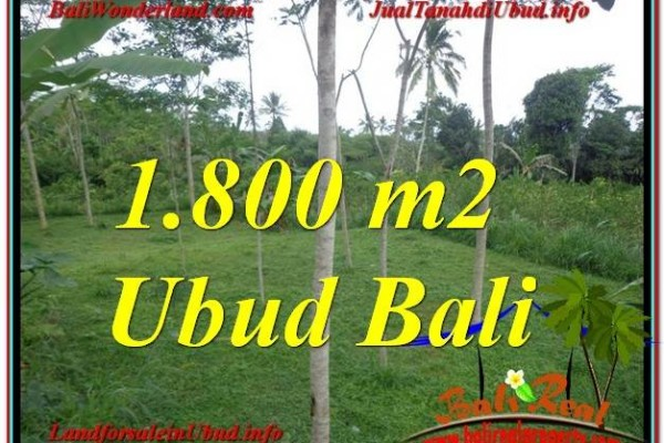 TANAH MURAH di UBUD 1,800 m2 di Ubud Tegalalang