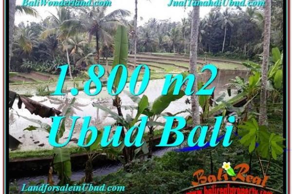TANAH DIJUAL MURAH di UBUD BALI Untuk INVESTASI TJUB616