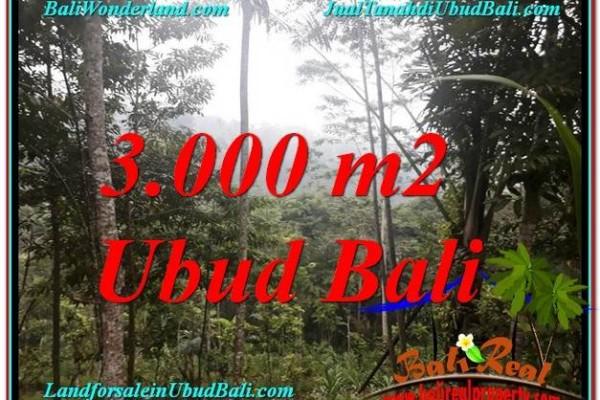 TANAH di UBUD JUAL MURAH 30 Are View Tebing