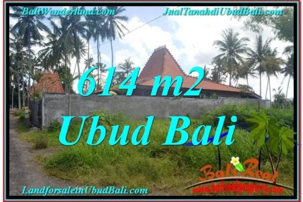 DIJUAL TANAH di UBUD BALI 6 Are di Sentral Ubud