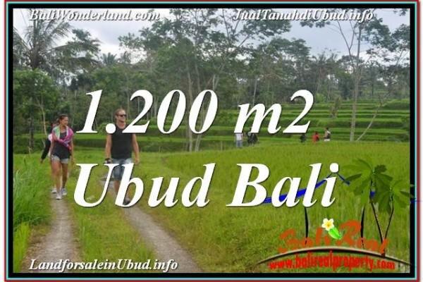 INVESTASI PROPERTY, TANAH DIJUAL MURAH di UBUD BALI TJUB624