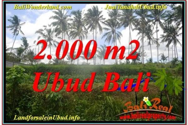 INVESTASI PROPERTY, JUAL TANAH MURAH di UBUD TJUB625