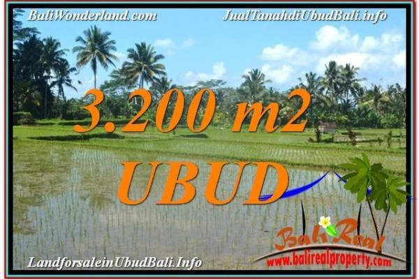 TANAH DIJUAL MURAH di UBUD BALI 3,200 m2 di Ubud Payangan