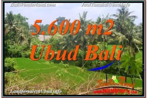 JUAL TANAH MURAH di UBUD 56 Are View Sawah, Link. Villa
