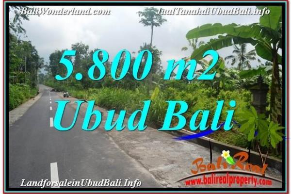 TANAH di UBUD BALI DIJUAL MURAH 5,800 m2 di Ubud Tegalalang