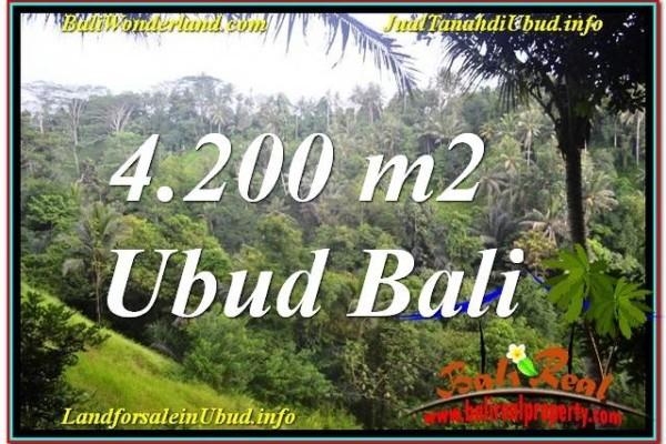 TANAH DIJUAL di UBUD BALI 4,200 m2  View Tebing dan Sungai, Link. Villa