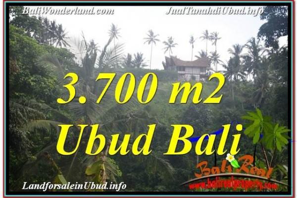 INVESTASI PROPERTY, JUAL TANAH MURAH di UBUD BALI TJUB640